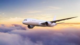 1 yılda kaç havayolu uçuşlarını durdurdu?